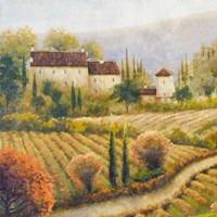 Tuscany Vineyard I Fine Art Print