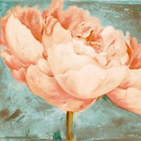 Beautiful Peonies Square II Fine Art Print