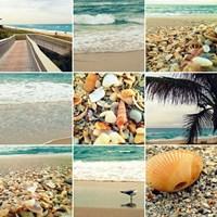 Shell Beach (9 Patch) Fine Art Print