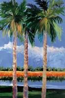 Palm Coast Fine Art Print