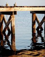 Waterside Beauty I Fine Art Print