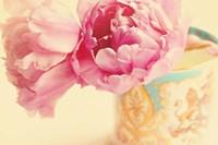 Elegant Vase Fine Art Print
