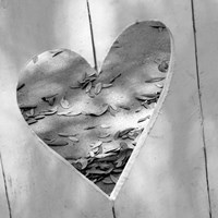 B&W Heart Full of Love Fine Art Print