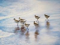 Sand Dancers Fine Art Print