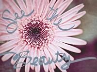 See the Beauty Fine Art Print