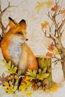 Mystic Woodland I Fine Art Print