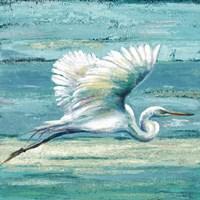 Great Egret I Fine Art Print