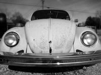 Vintage Bug Framed Print