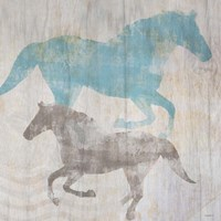 Equine II Framed Print