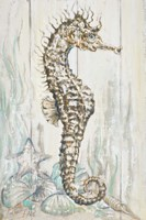 Antique Sea Horse I Fine Art Print