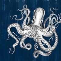 Underwater Creatures II Fine Art Print