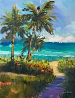 Caribbean View II Framed Print