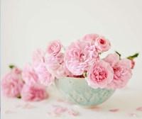 Petals and Porcelain Fine Art Print
