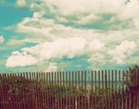 Beyond The Fence Fine Art Print