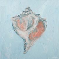 Conch & Scallop I Fine Art Print