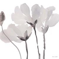 Gray Tonal Magnolias II Framed Print