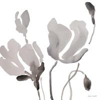 Gray Tonal Magnolias III Framed Print