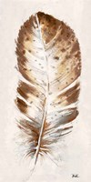 Brown Watercolor Feather I Fine Art Print