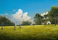 Crane Field Fine Art Print