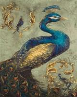 Peacock on Sage I Fine Art Print