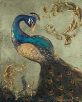 Peacock on Sage II Fine Art Print