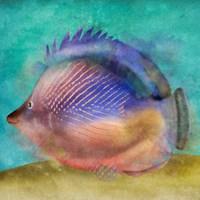 Fish II Framed Print