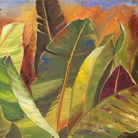 Through the Leaves Square II Fine Art Print