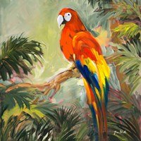 Parrots at Bay I Fine Art Print
