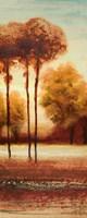 Vibrant Land II Framed Print