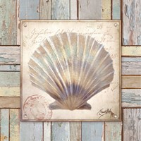 Beach Shell I Fine Art Print