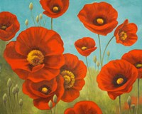 Field of Poppies I Fine Art Print