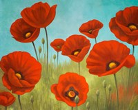 Field of Poppies II Fine Art Print
