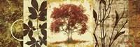 Red Tree Panel I Framed Print