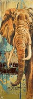 New Safari on Teal II Framed Print