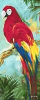 Tropic Parrots I Fine Art Print