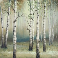 Late September Birch II Fine Art Print