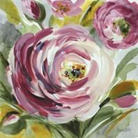 Ranunculus Rosa I Fine Art Print