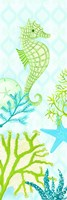 Seahorse Reef Panel I Framed Print