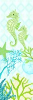 Seahorse Reef Panel II Fine Art Print