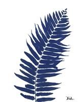 Indigo Ferns I Fine Art Print