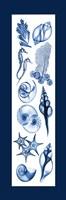 Sealife Blue Fine Art Print