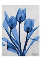 Midnight Tulips 2 Fine Art Print