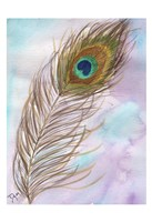 Peacock Feather 1 Fine Art Print