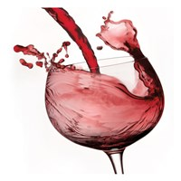 Red Wine Pour 2 Fine Art Print