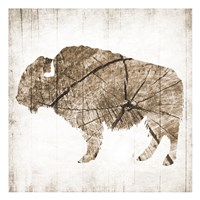 Buffalo Rings Fine Art Print