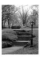 Central Park Stairs To Nowhere Fine Art Print