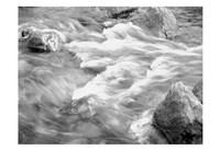 In Motion BW 2B Fine Art Print