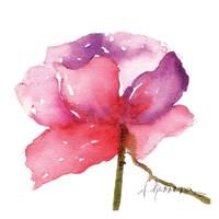 Acuarela 82508 Fine Art Print