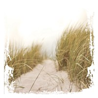Beach Entry Fine Art Print