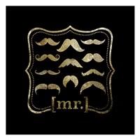 Mustache Galore Fine Art Print